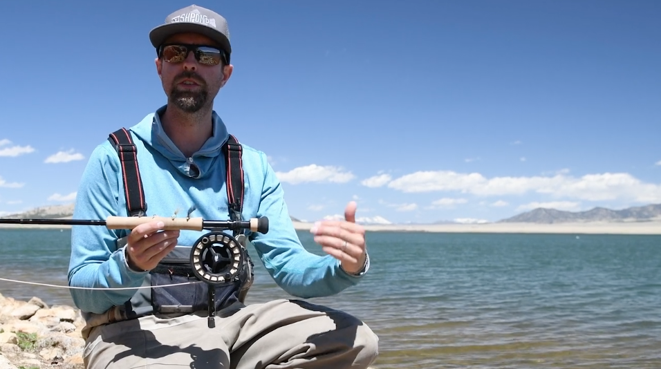 Trout Tips: Fly selection for lakes