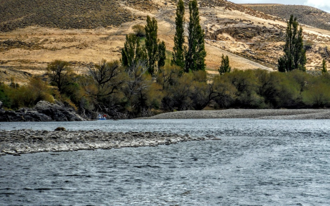 Trout Tips: Think small, even on big water
