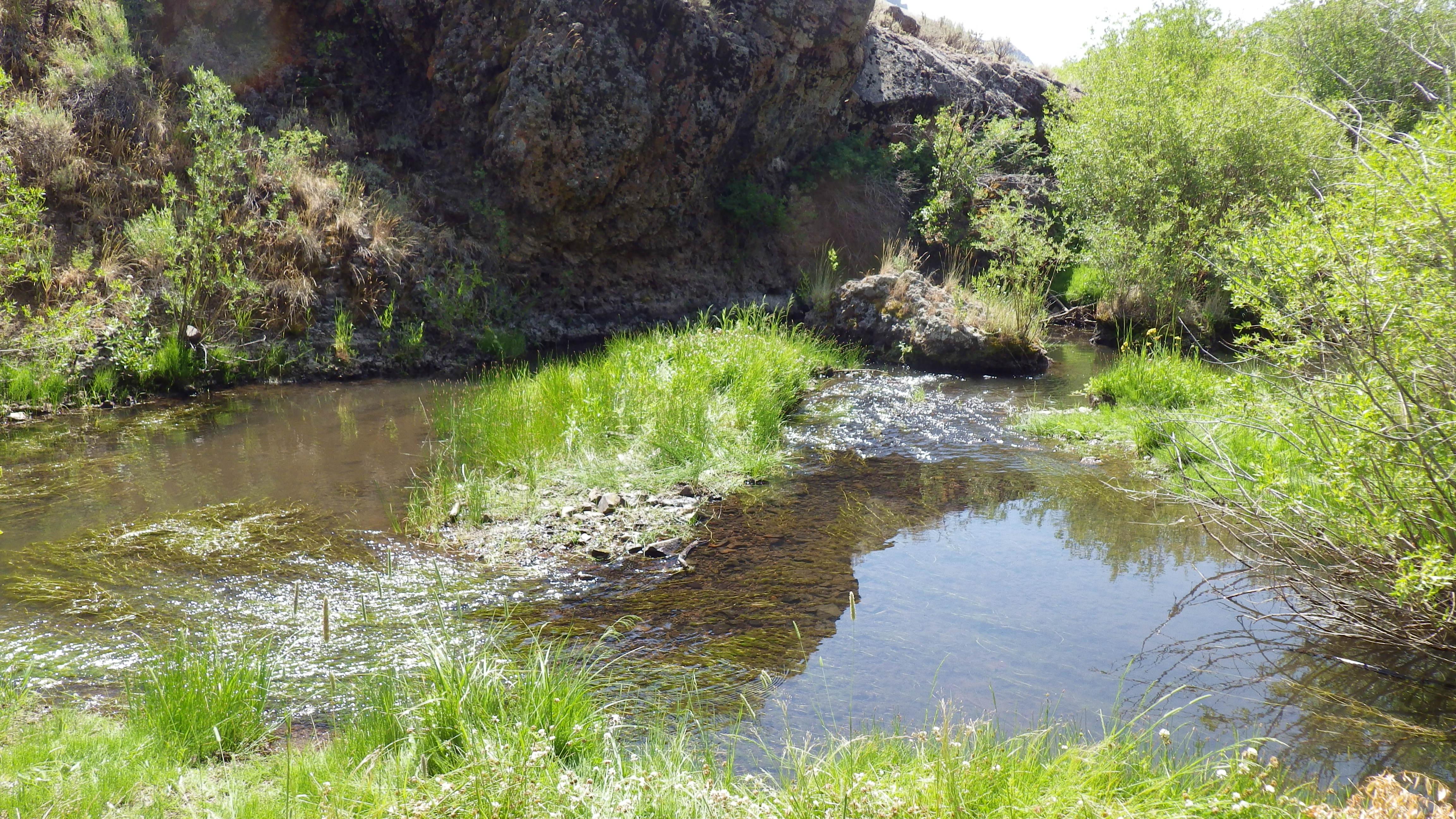 Goose Creek, Sawtooth National Forest, Idaho