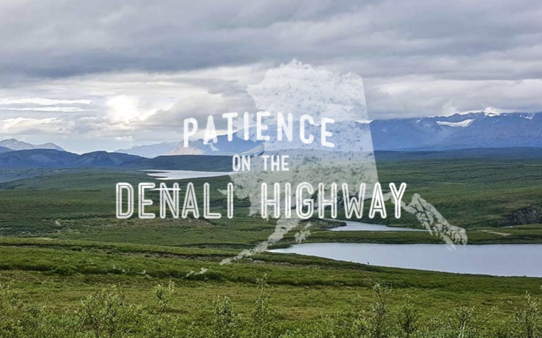 Patience on the Denali Highway
