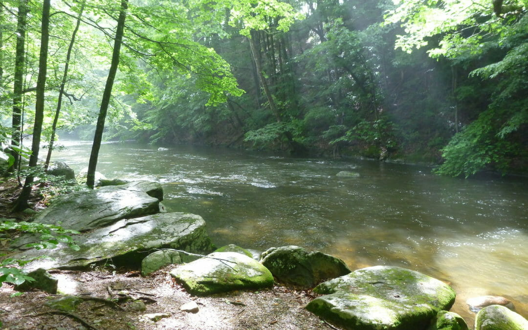 TU volunteers support stream protections in NJ