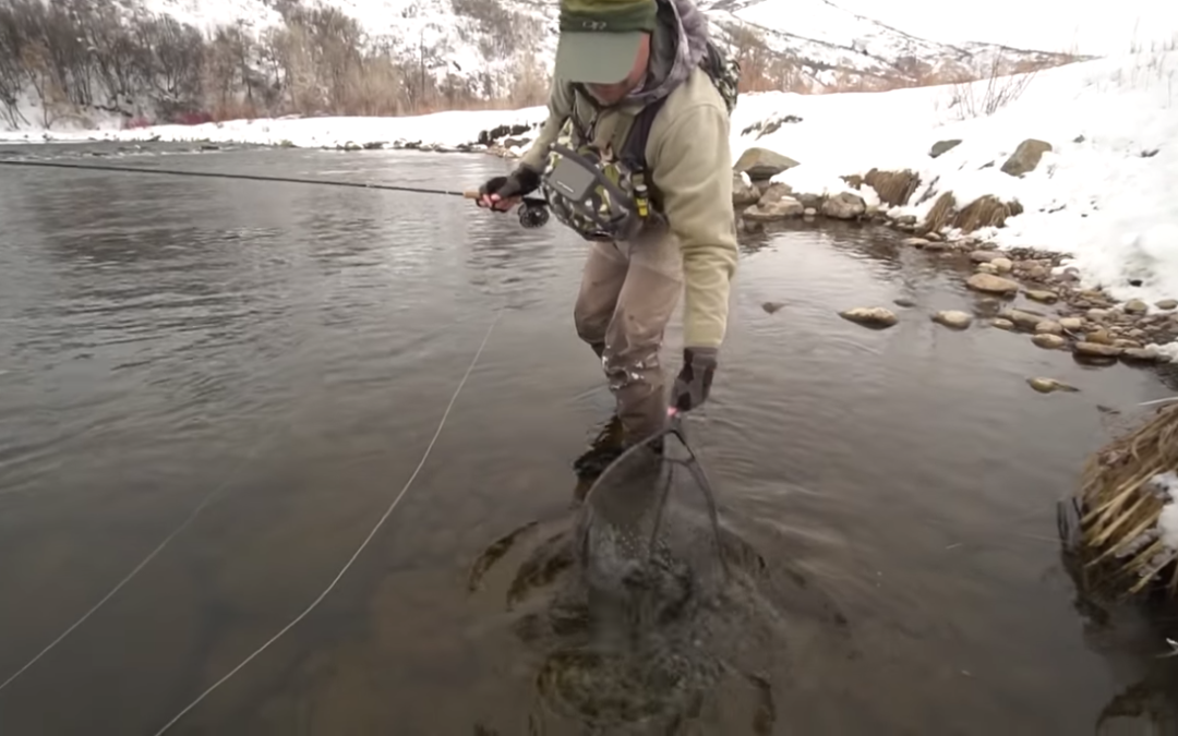 Streamer fishing with a Euro-nymph rod