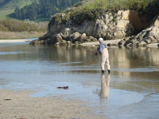 New land deal will benefit Carmel River steelhead