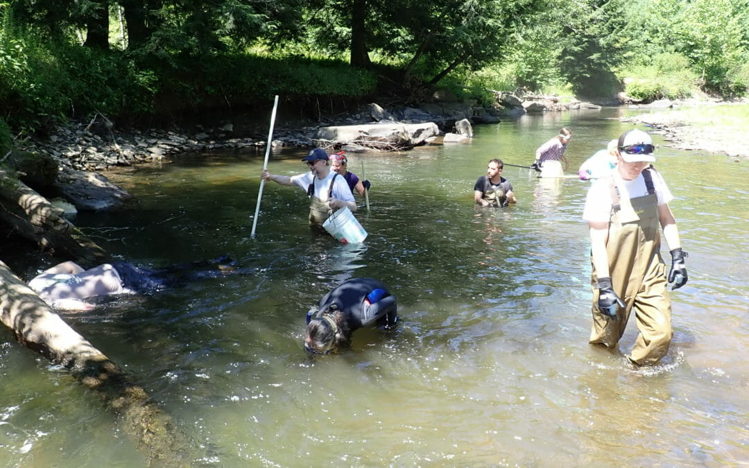 Looking back at a big year for PA Coldwater Habitat Program