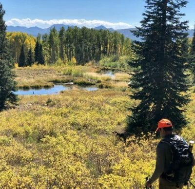 An angler walks through an autumn meadow on the Thompson Divide in search of wild trout.