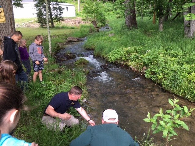 Restoring trout, protecting the future