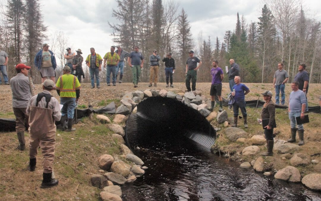 Culverts, flooding and native trout in Wisconsin