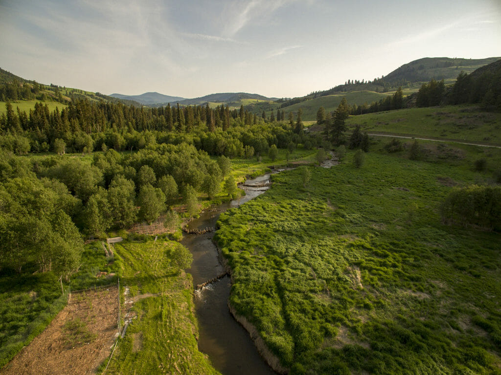 This image has an empty alt attribute; its file name is constructed-beaver-dams-on-the-methow-1024x767.jpg