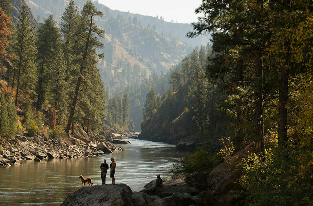 Congress introduces bipartisan bill to recover fish and wildlife