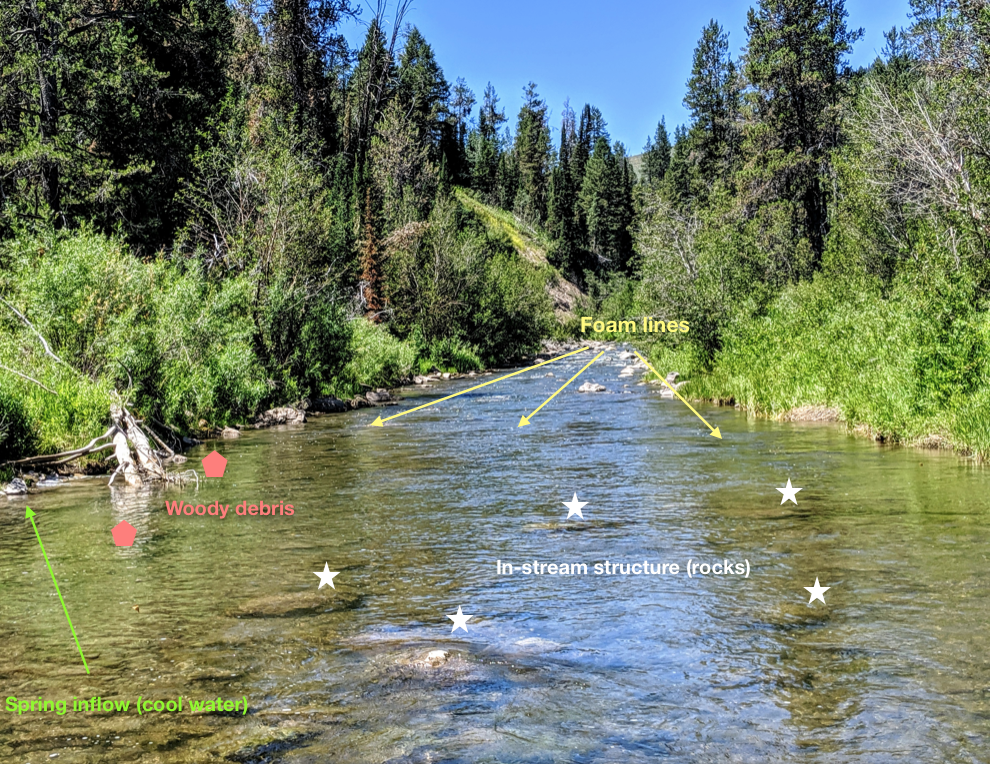 A somewhat plain photo of a trout stream labeled with fish fishable structure.