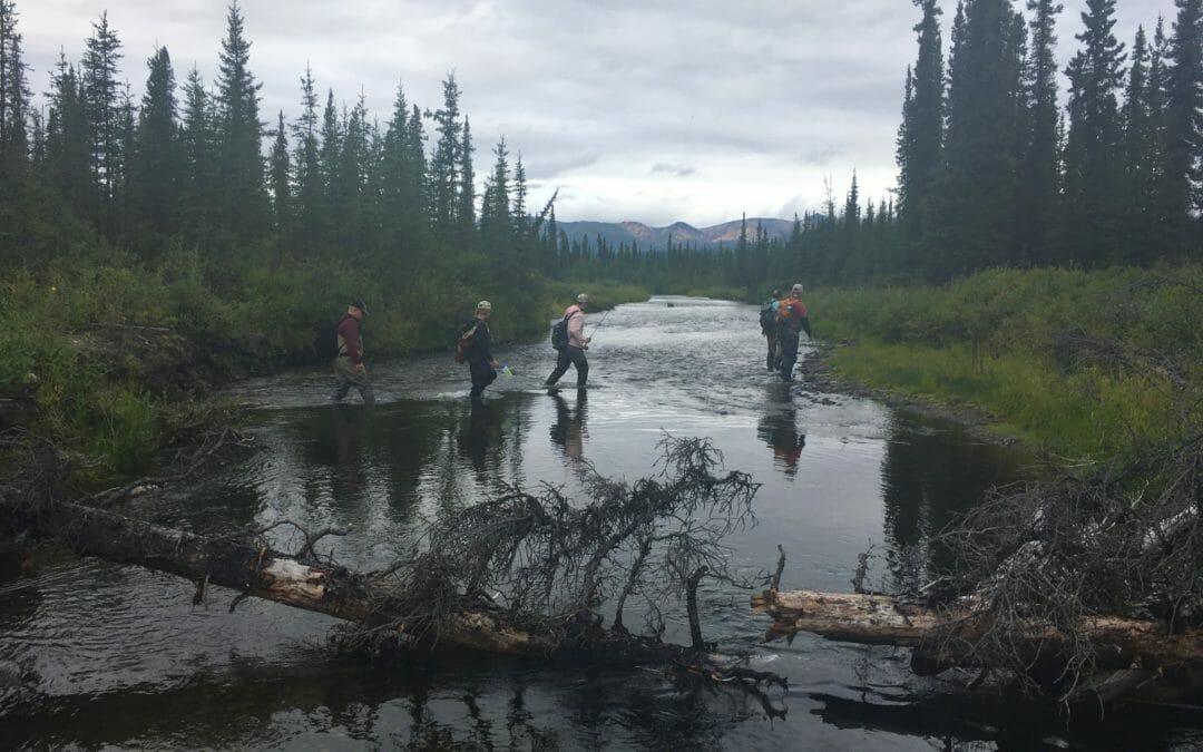 Saying thanks through fishing
