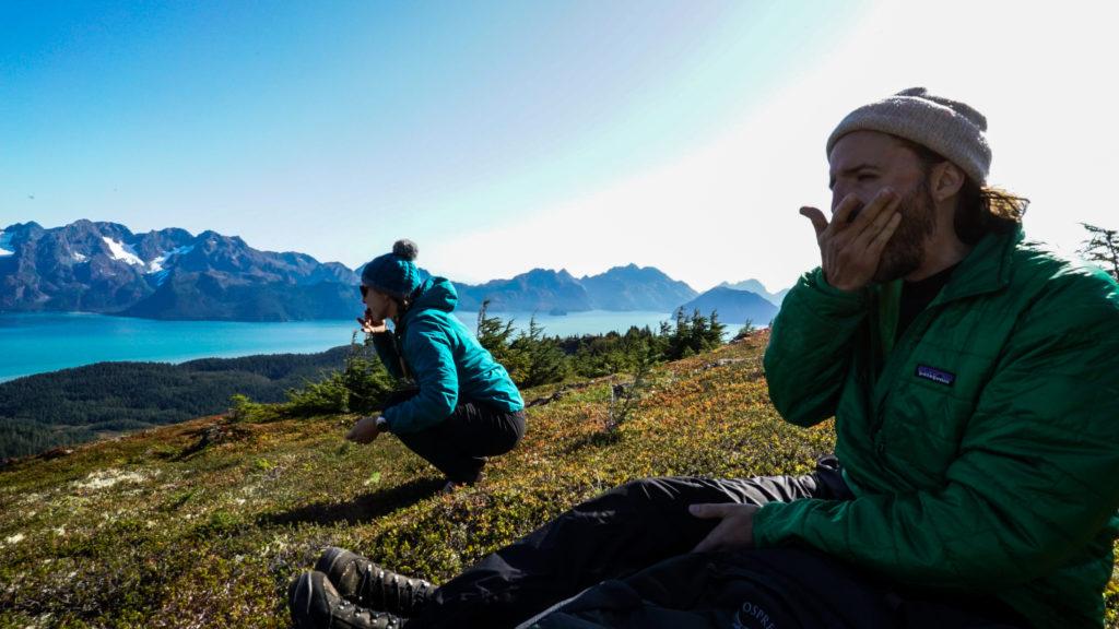 Hikers eat blueberries overlooking Resurrection Bay.