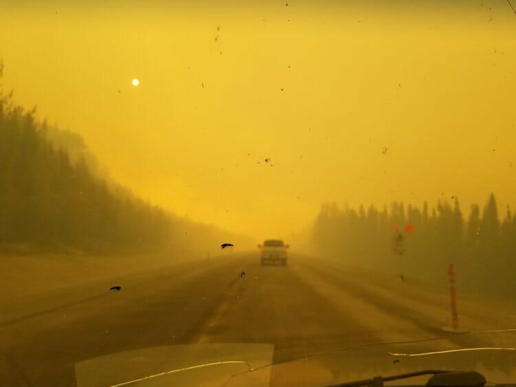 The stress of an 'un-seasonable' summer in Alaska