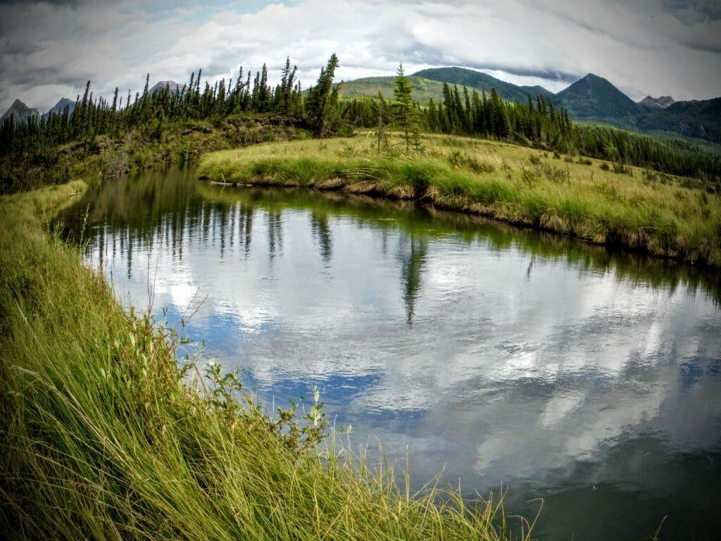 An eastern Alaska boreal creek.