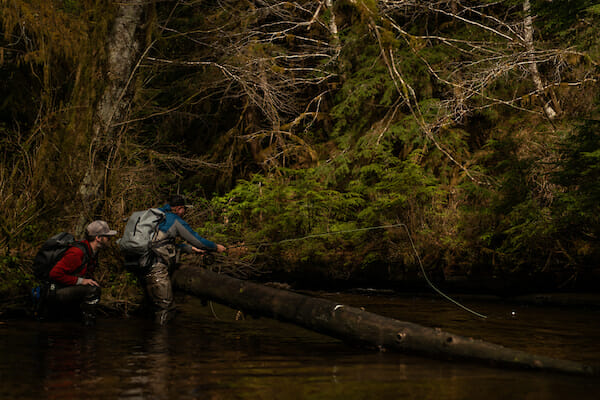 Act, then put the Tongass on your bucket list
