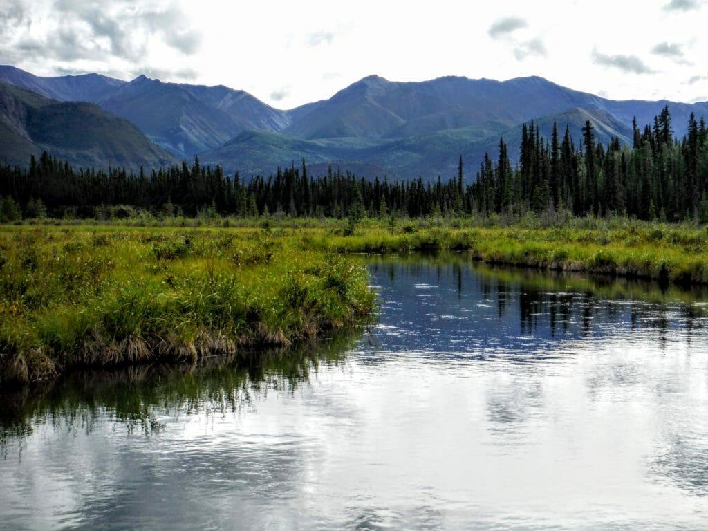 A deep, slow creek flows through the wilds of eastern Alaska.