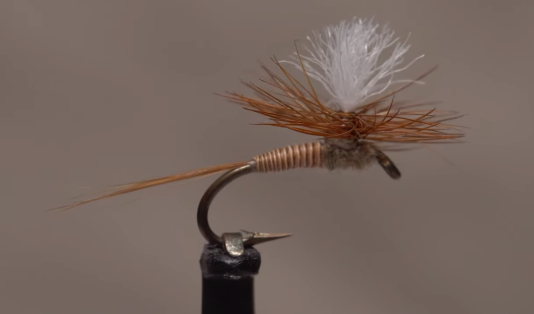 Tying quill bodies