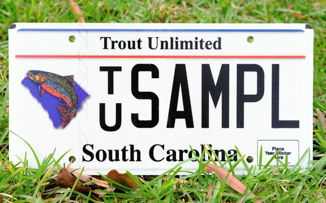 New license plate means happy trout in South Carolina