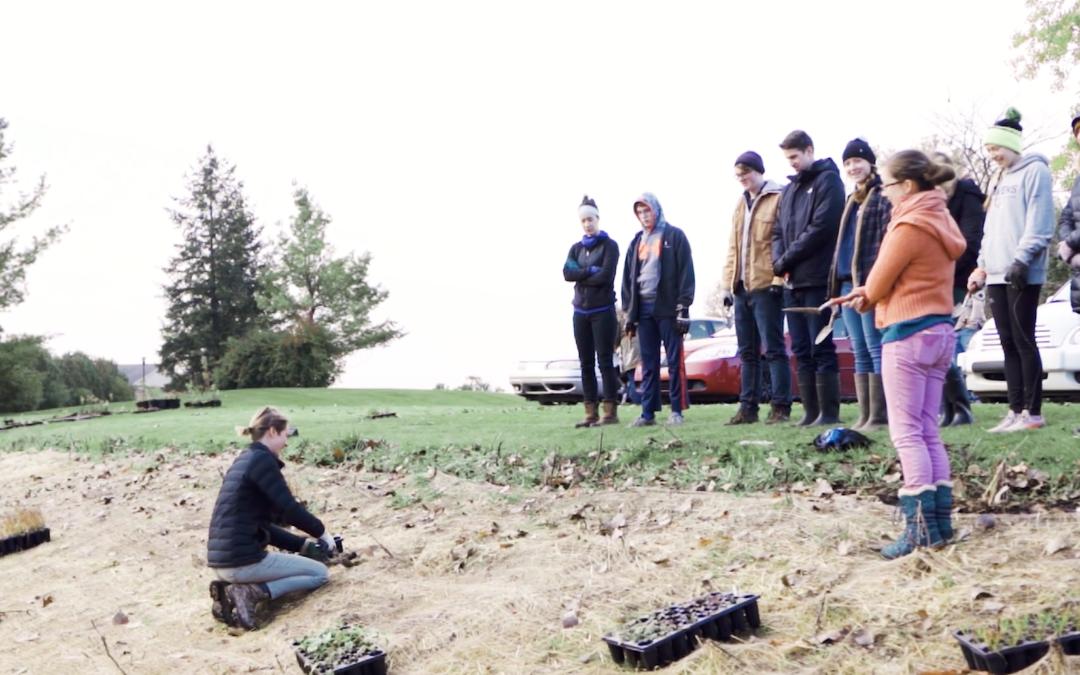 Grand Valley State U film crew highlights Green Team
