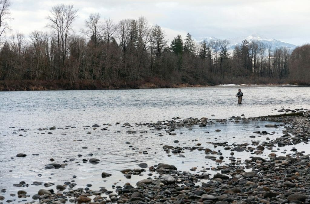 Lean season for Washington steelhead (and what anglers can do about it)