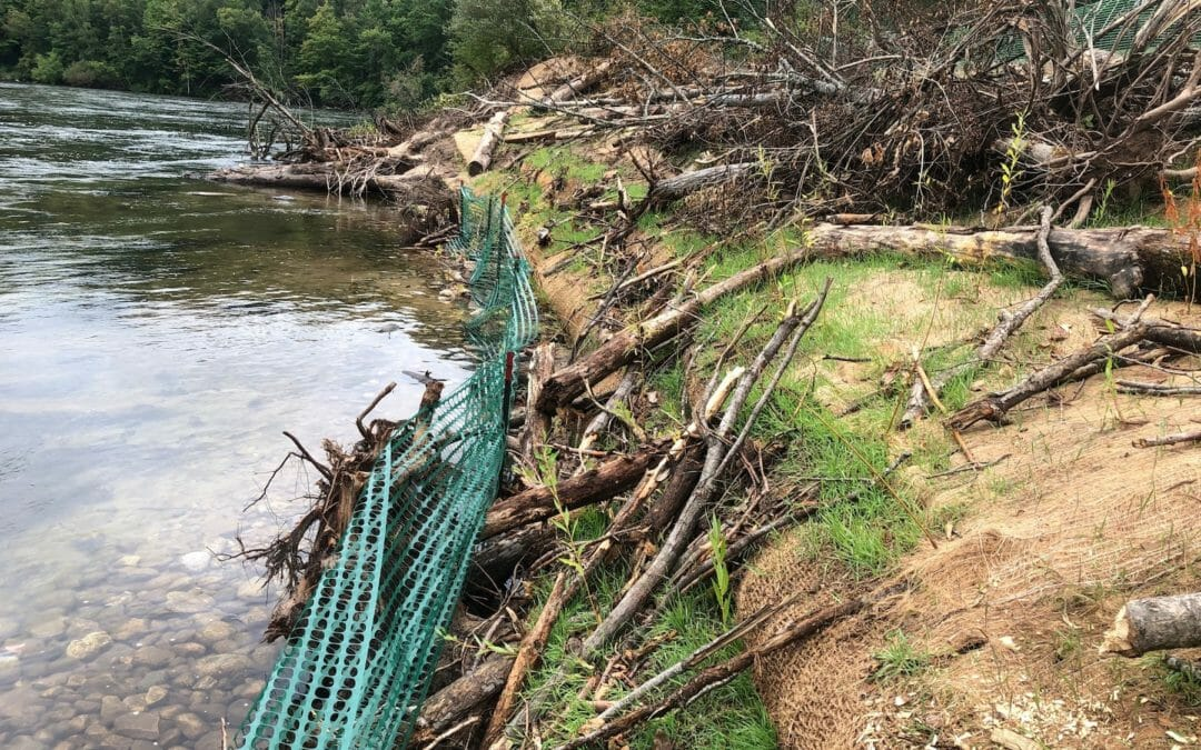 TU completes first phase of Tippy Dam site bank restoration in Michigan