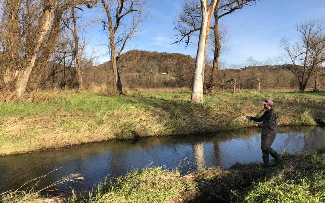 Minnesota's 2020 Driftless Area restoration overview