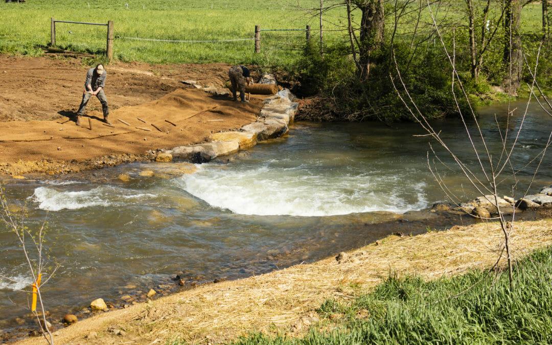 Beer boost: Team effort improves habitat on Virginia's Beaver Creek