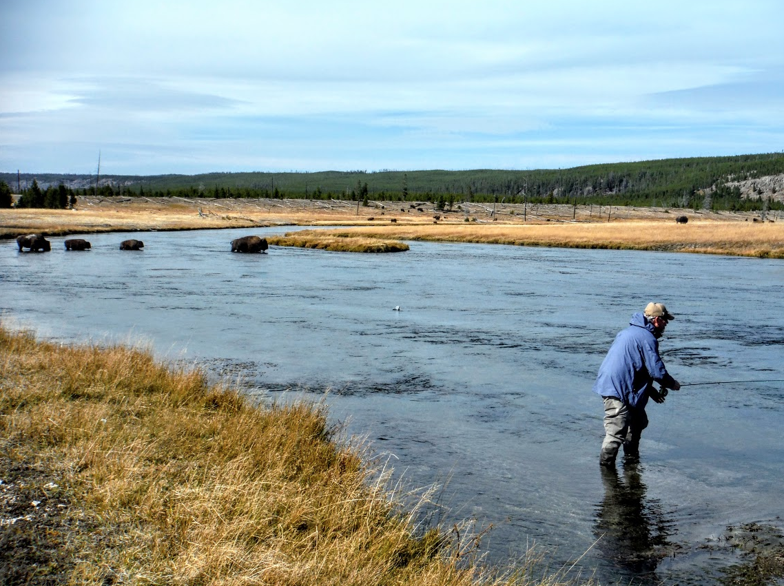 Fishing the Firehole River in Yellowstone National Park.