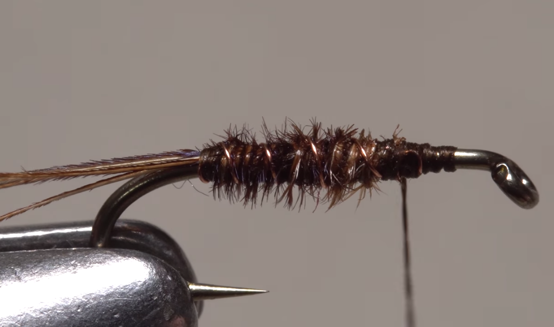 The Flashback Pheasant Tail Nymph