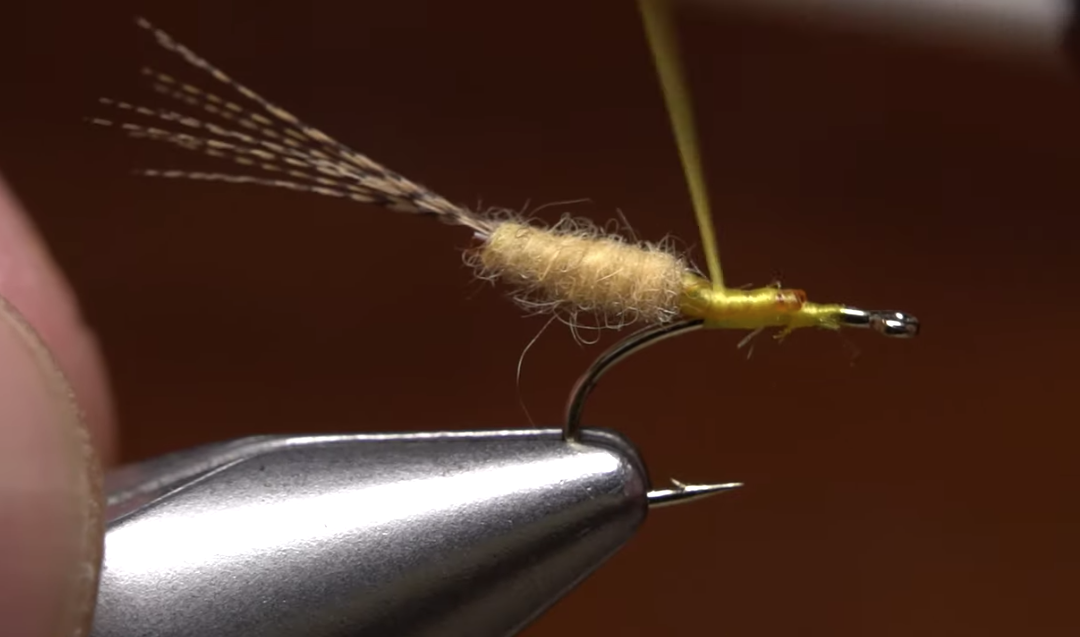 Tying easy extended bodies