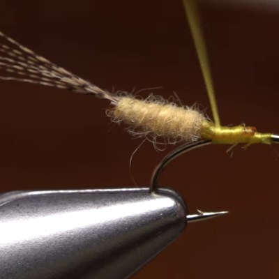 Tying an extended body fly