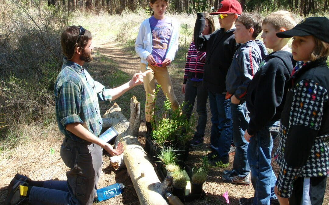 Take a virtual field trip with Trout Unlimited