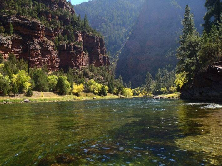 An introspection about working with water and trout