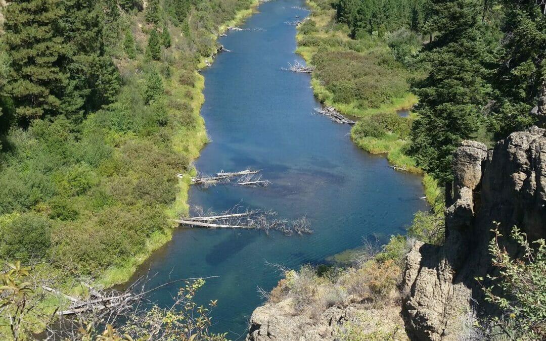 TU awarded $1.53 million for eight restoration projects in upper Klamath Basin