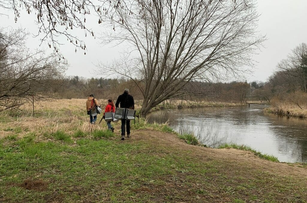 Trout Unlimited activates 'tree army' in Michigan