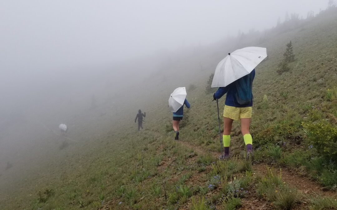 Hiking the CDT: Long hikes in the rain and tent trouble