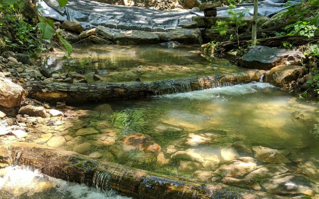 TU and Forest Service team up to reconnect trout stream in Virgina