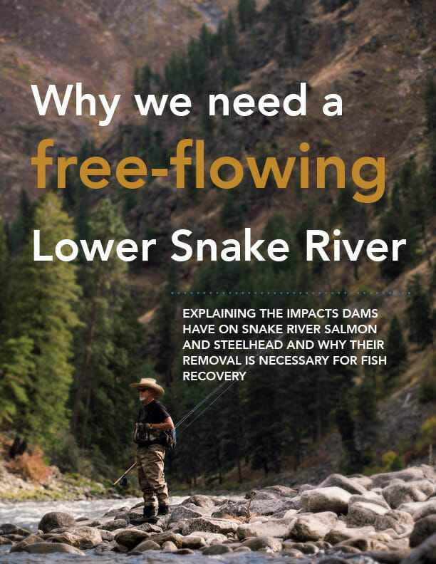 Why we need a free-flowing Lower Snake River report