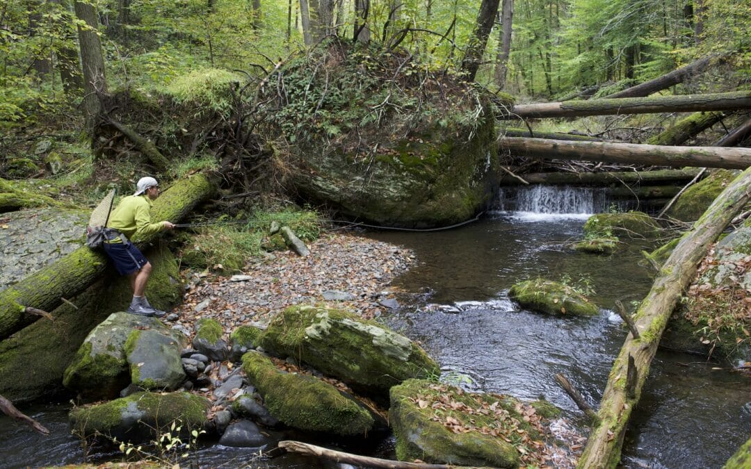 Trout and conservation get two big wins in Pennsylvania
