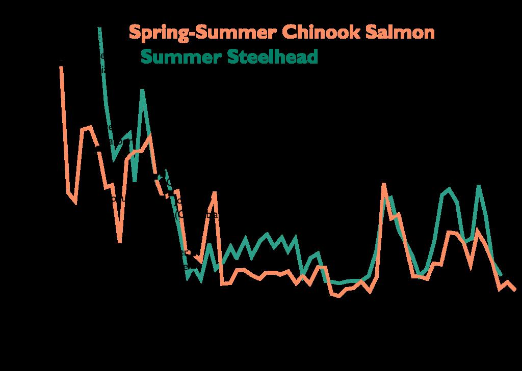 Graph of Snake River salmon and steelhead decline