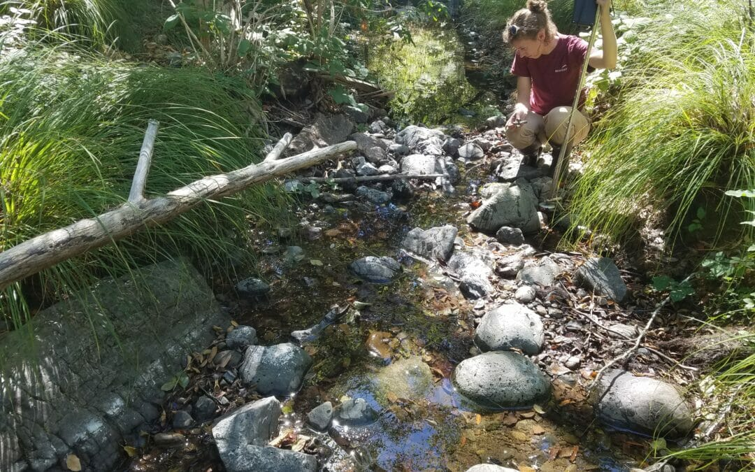 TU's Conservation Hydrology program steps in to monitor and measure California streams