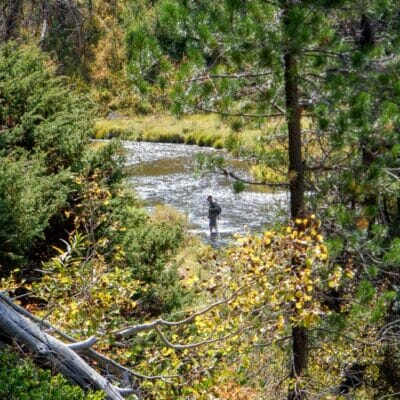 An angler fishes a small, mountain stream in Idaho.