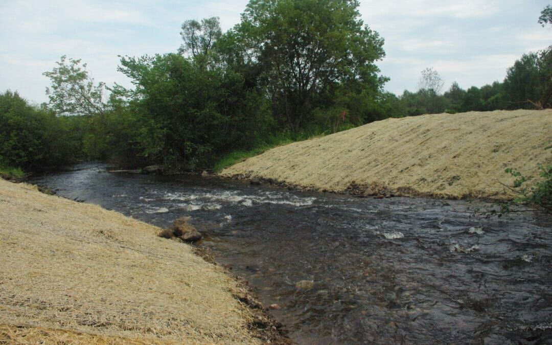 TU and partners remove  logging dam on Wisconsin trout stream