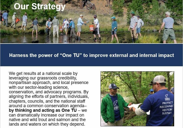 """""""One TU"""" Expansion in TU's Draft Strategic Plan"""