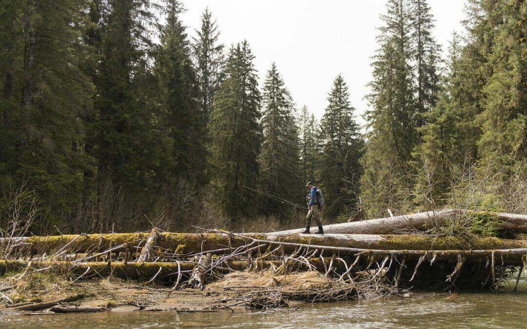 Desperately seeking steelhead in Alaska for science