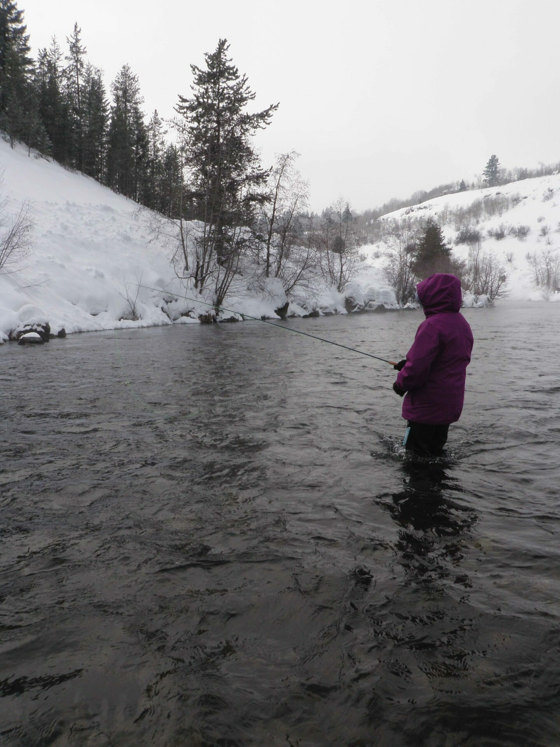 A girl fly fishes in the winter.