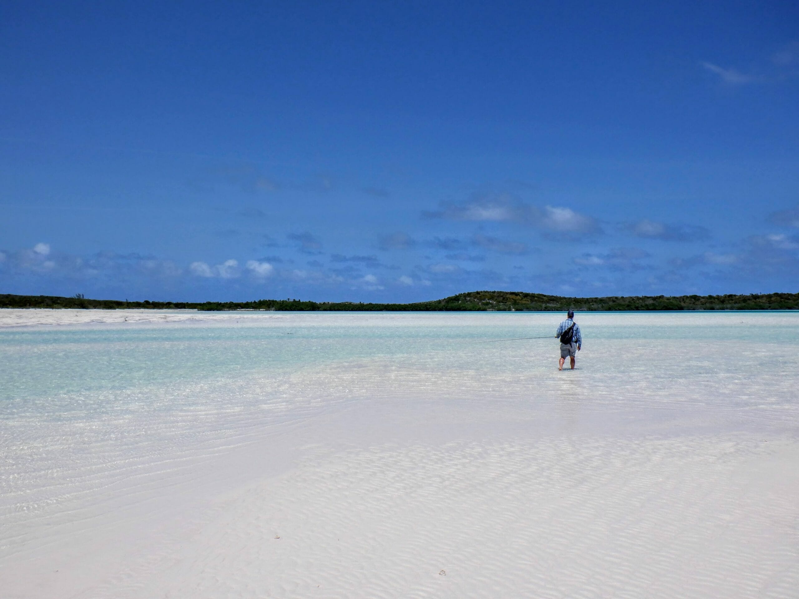 An angler walking across a Bahamian flat.